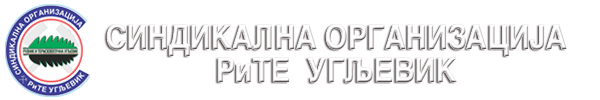 Синдикат РиТЕ Угљевик